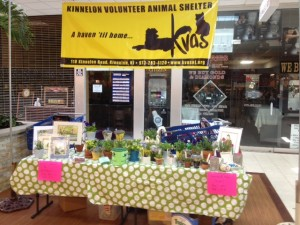 Table selling plants and other items at the KVAS shake a can event.
